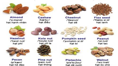 Từ vựng tiếng Anh: Các loại hạt