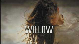 Bài hát WILLOW