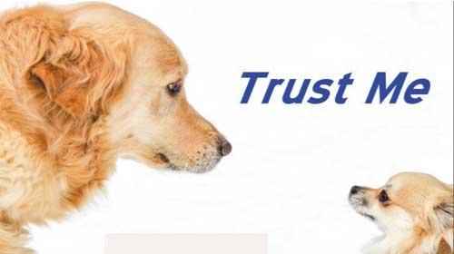 Bật mí về độ tin tưởng: Trust và Believe