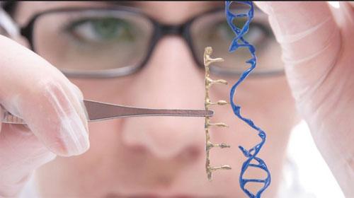Chỉnh sửa gen có thể chữa bệnh ung thư và bệnh di truyền ALL  - Gene editing could cure cancer and ALL inherited diseases