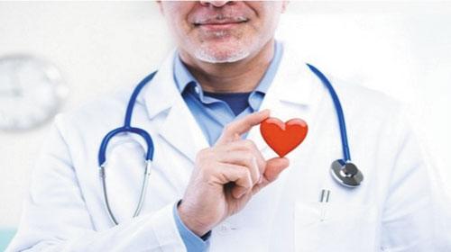 Hệ tim mạch trong tiếng Anh