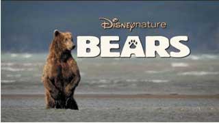 Khám Phá Cuộc Sống Nhà gấu