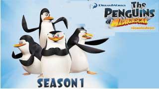 Những chú chim cánh cụt đến từ Madagascar 1