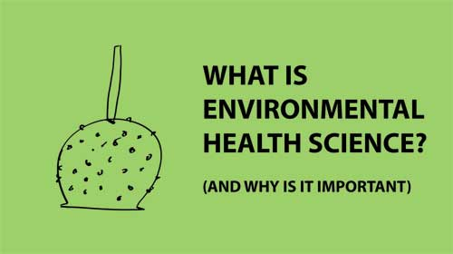 Khoa học sức khỏe môi trường là gì?